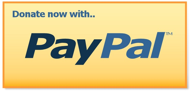 PayPal Option